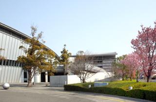 facilities_big-wave_13