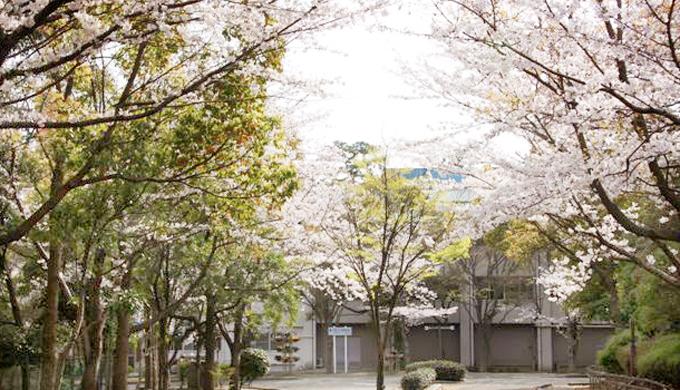 facilities_kasei-park_04