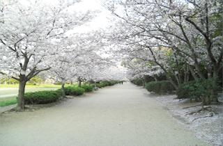 kasei-park_facilities_01_58