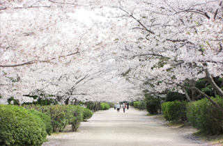 kasei-park_facilities_01_59