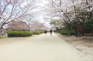 kasei-park_facilities_01_60