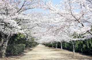 kasei-park_facilities_01_62
