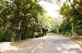 kasei-park_facilities_02_02