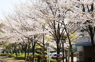 kasei-park_facilities_02_07