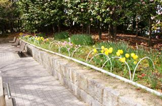 kasei-park_facilities_03_05