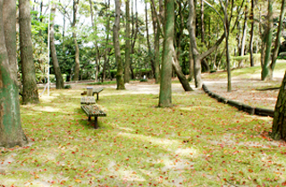 kasei-park_facilities_03_21