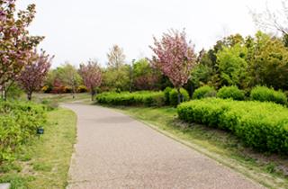 kasei-park_facilities_04_14