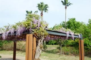 kasei-park_facilities_04_26